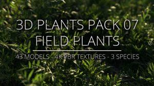 3D Plants Pack